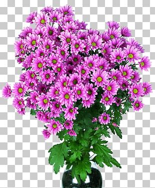 Kremenchuk Flower Bouquet Chrysanthemum Cut Flowers PNG