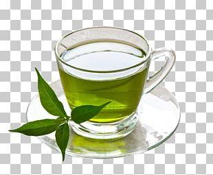 Green Tea Coffee Herbal Tea Drink PNG