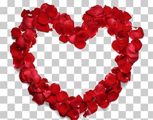 Heart Beach Rose Petal Flower PNG