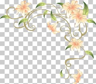 Flower Vine Stock Photography PNG