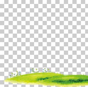 Lawn Cartoon Grass PNG