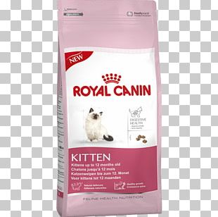 Cat Food Royal Canin Kitten Feline Health Nutrition Kitten Dry Food Dog PNG