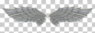 Feather Angel Angel Wings Png PNG