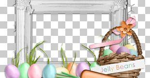 Easter Bunny Frames Easter Egg PNG