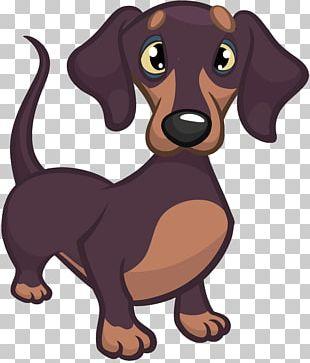 Dachshund Puppy Cartoon PNG