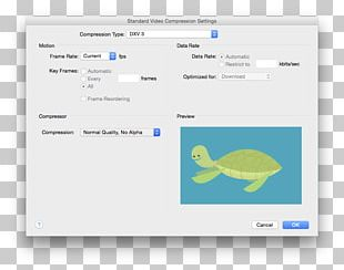 Adobe After Effects QuickTime Codec Computer Software PNG