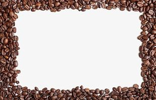 Coffee Beans Border PNG