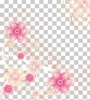 17 Years Of Beautiful Flowers PNG