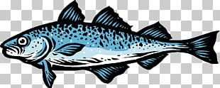Salmon Fish Products 09777 Oily Fish PNG