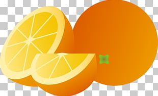 Juice Punch Orange Fruit PNG