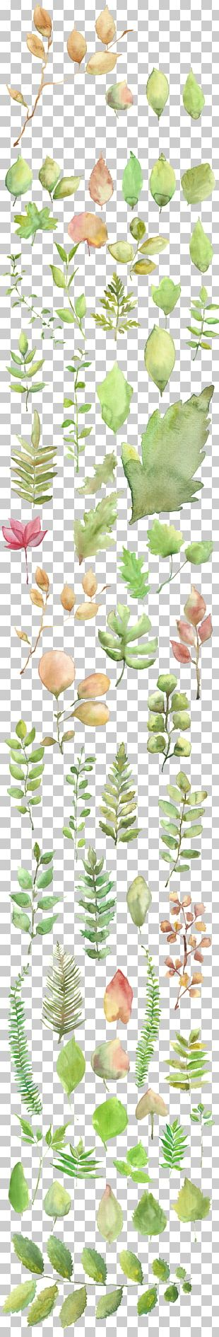 Watercolor Painting Shading PNG