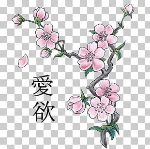 Japan Cherry Blossom Drawing Sketch PNG