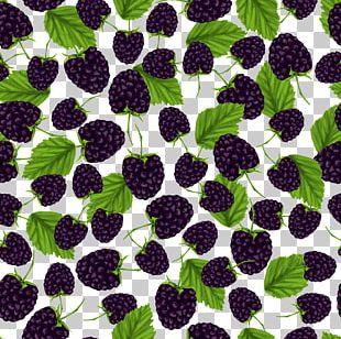 Frutti Di Bosco BlackBerry Pattern PNG