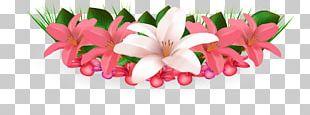 Flower Hawaiian Hibiscus PNG