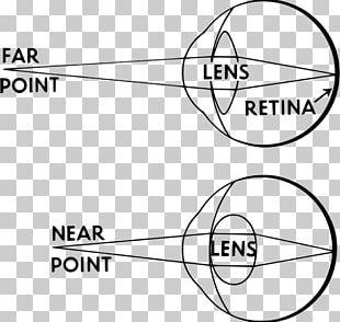 Accommodation Reflex Human Eye Lens PNG