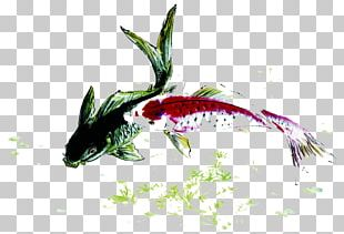 Koi Fish Carp Ink PNG