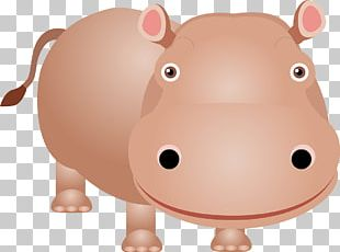 Pygmy Hippopotamus Animals Kinder Happy Hippo PNG