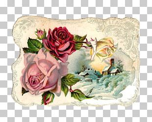 Rose Flower Vintage Clothing Pink PNG