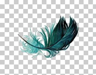 The Floating Feather Bird Watercolor Painting PNG