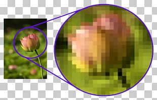 Raster Graphics Bitmap Computer Graphics BMP File Format PNG
