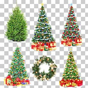 Poland Santa Claus Christmas Tree Christmas Wafer PNG