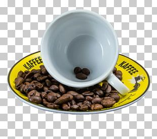 Coffee Espresso Tea Cafe Kopi Luwak PNG