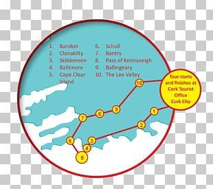 Human Behavior Organism Diagram Brand PNG