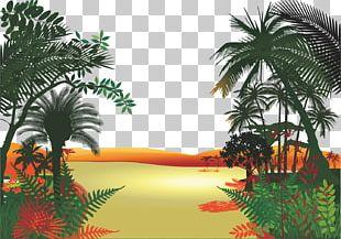 Jungle Cartoon PNG