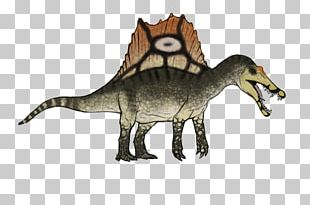 Spinosaurus ARK: Survival Evolved Velociraptor Tyrannosaurus Stegosaurus PNG
