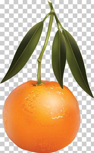 Clementine Tangerine Mandarin Orange Juice PNG