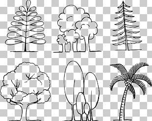 Floral Design Human Behavior White Pattern PNG