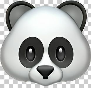 Giant Panda Emojipedia Sticker IPhone PNG