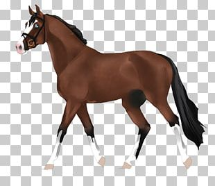 Amazon.com Mare Clydesdale Horse Andalusian Horse Toy PNG