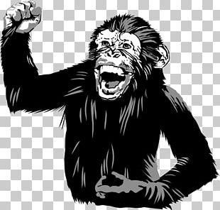 Common Chimpanzee Western Gorilla Homo Sapiens Three Wise Monkeys Food PNG