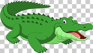 Crocodile Alligator Reptile Cartoon PNG