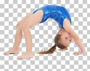 Gymnastics Fitness Centre Tumbling Cheerleading Balance Beam PNG