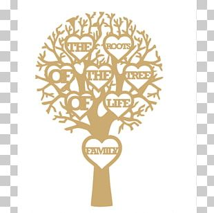 Tree Of Life Family Tree PNG