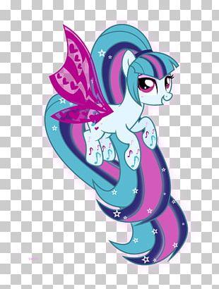 Rainbow Dash Pony Twilight Sparkle PNG