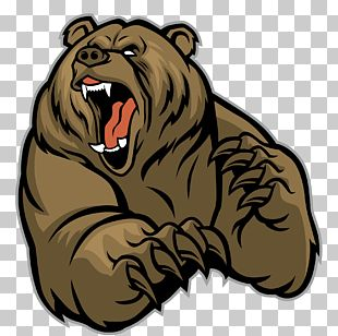 Polar Bear Brown Bear Grizzly Bear PNG