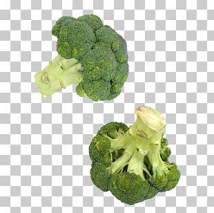 Vegetable Broccoli Cauliflower Food PNG