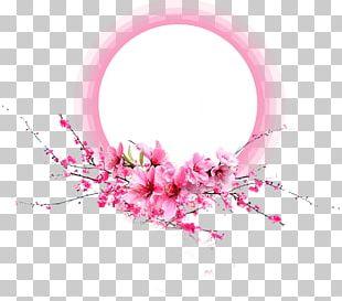 Pink Petal Flower PNG