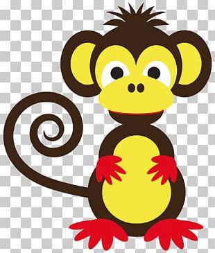 Ape Monkey Cuteness PNG
