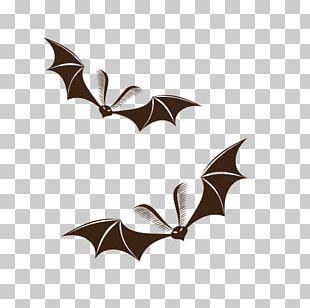 Bat Halloween Jack-o-lantern PNG