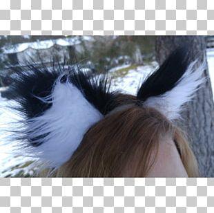 Ear Wildcat Tail Fur PNG