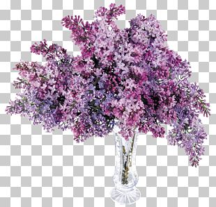 Lilac Computer File PNG