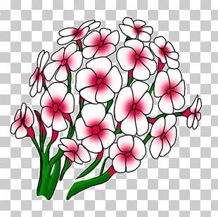 Floral Design Cut Flowers Flower Bouquet PNG