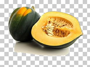 Acorn Squash Cucurbita Zucchini Butternut Squash Kabocha PNG