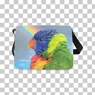 Loriini Rainbow Lorikeet Budgerigar Cockatiel Bag PNG