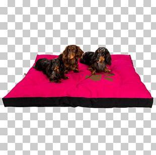 Dog Breed Mattress Pelechy Dog Beds PNG
