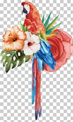 Parrot Watercolour Flowers Bird Watercolor Painting PNG